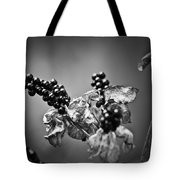 Gone To Seed Blackberry Lily Tote Bag