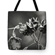 Gone To Seed Hibiscus Tote Bag