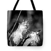 Gone To Seed Milkweed 2 Tote Bag