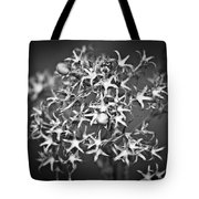 Gone To Seed Phlox Tote Bag