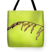 Gone To Seed Tote Bag