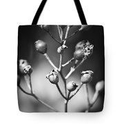 Gone To Seed Rose Hips Tote Bag