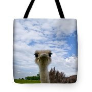 Good Morning From Tennessee Tote Bag