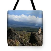 Good Morning Maui Tote Bag