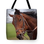 Good Morning - Racehorse On The Gallops Tote Bag