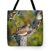 Good Mourning Dove By H H Photography Of Florida Tote Bag