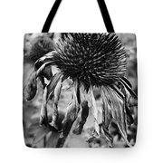 Goodnight Gracie Tote Bag