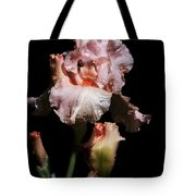 Goodnight Kiss Iris  Tote Bag