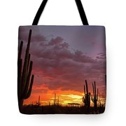 Goodnight Tucson Tote Bag