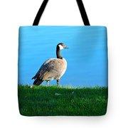 Goose #3 Pose Tote Bag