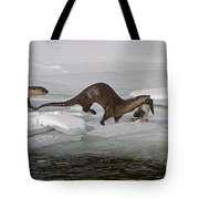 Goose For Lunch-signed-#1133 Tote Bag