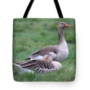 Goose Lookout Tote Bag