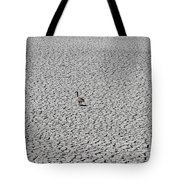 Goose On Lake August 27 2015 Tote Bag