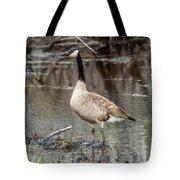 Goose Posing Tote Bag
