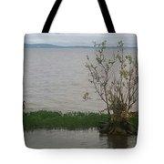 Goose Watch Tote Bag