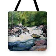 Gooseberry River Tote Bag