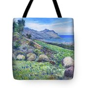 Gordon's Bay Cape Town South Africa Tote Bag