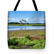 Gordons Pond At Cape Henlopen State Park - Delaware Tote Bag