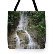 Gorge Creek Falls - North Cascades National Park Wa Tote Bag by Christine Till