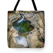Gorge Trail In Autumn Watkins Glen Tote Bag