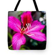 Gorgeous Bauhina Tote Bag