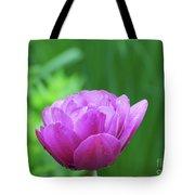 Gorgeous Blooming And Flowering Dark Pink Parrot Tulip Tote Bag