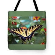 Gorgeous Butterfly Tote Bag