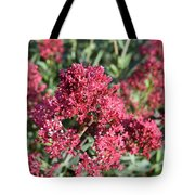 Gorgeous Cluster Of Red Phlox Flowers In A Garden Tote Bag