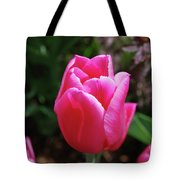 Gorgeous Dark Pink Tulip Blooming In A Garden Tote Bag