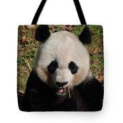 Gorgeous Face Of A Panda Bear Eating Bamboo Tote Bag
