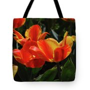 Gorgeous Flowering Orange And Red Blooming Tulips Tote Bag