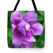 Gorgeous Flowering Purple Tulip Flower Blossoms In A Garden Tote Bag