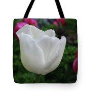 Gorgeous Flowering White Tulip Flower Blossom Tote Bag