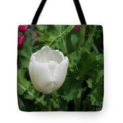Gorgeous Flowering White Tulip In A Spring Garden Tote Bag