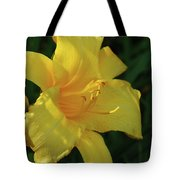 Gorgeous Flowering Yellow Daylily Blooming In A Garden Tote Bag