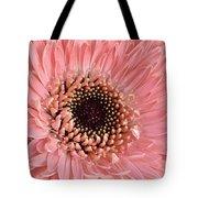 Gorgeous Gerbera Tote Bag