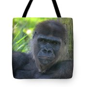 Gorgeous Gorilla Tote Bag