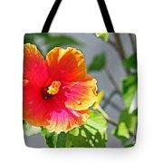 Gorgeous Hibiscus Tote Bag