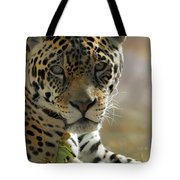 Gorgeous Jaguar Tote Bag by Sabrina L Ryan