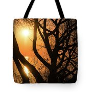 Gorgeous Morning Through The Tree Screen Tote Bag