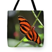 Gorgeous Orange And Black Oak Tiger Butterfly Tote Bag