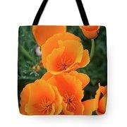 Gorgeous Orange California Poppies Tote Bag