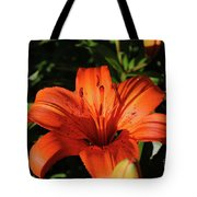 Gorgeous Pretty Orange Lily Flower Blooming In A Garden Tote Bag