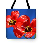 Gorgeous Red Tulips. Tote Bag