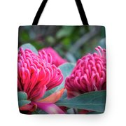 Gorgeous Waratah -floral Emblem Of New South Wales Tote Bag