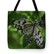 Gorgeous White Tree Nymph Butterfly With It's Wings Spread Tote Bag