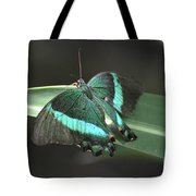 Gorgoeus Close Up Of This Emerald Swallowtail Butterfly  Tote Bag