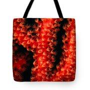 Gorgonian Coral Tote Bag
