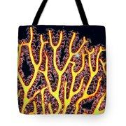 Gorgonian Coral Fan Tote Bag