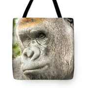 Gorilla - Como Zoo, St. Paul, Minnesota Tote Bag